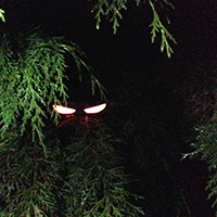 glow_stick_eyes
