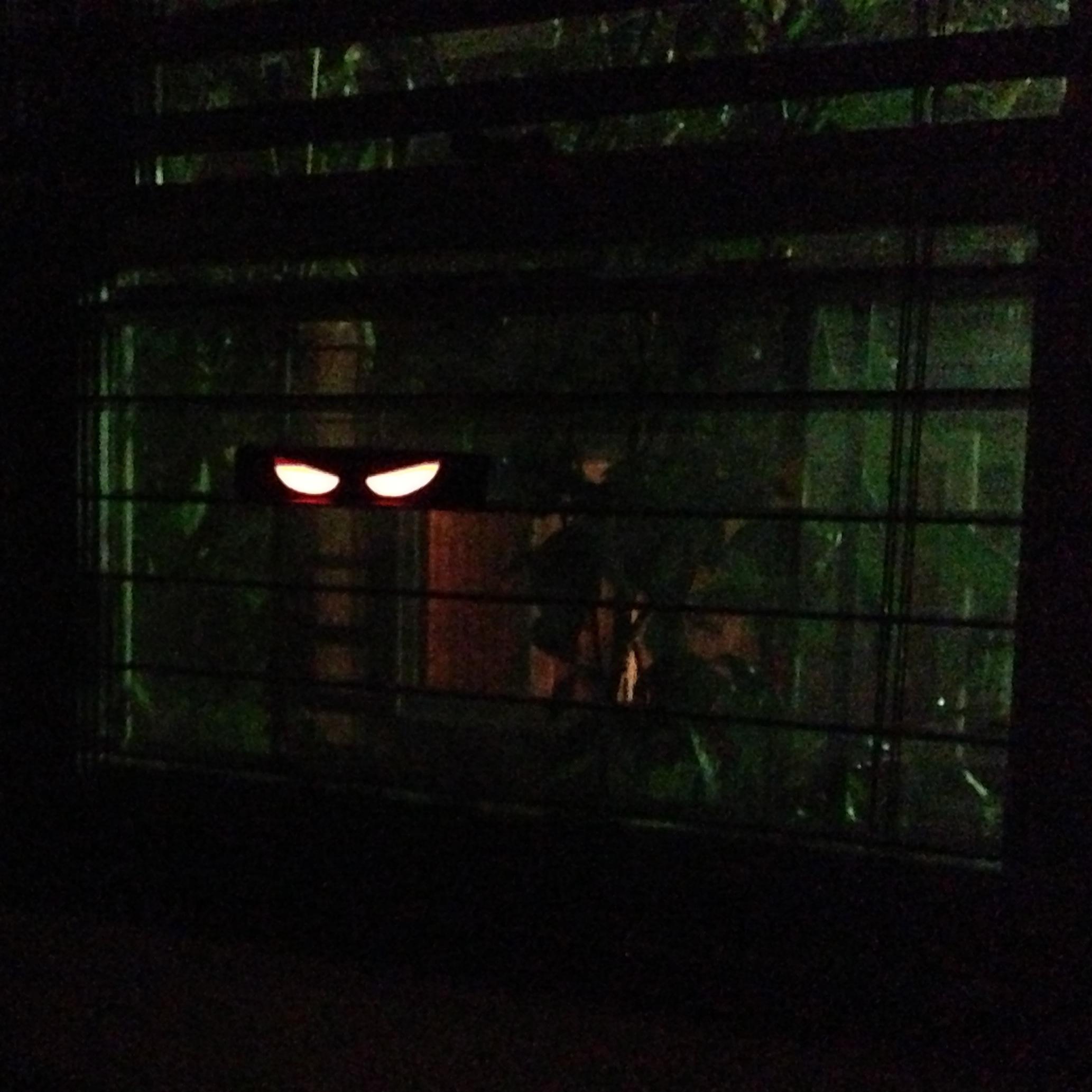 recently - Glow Sticks For Halloween