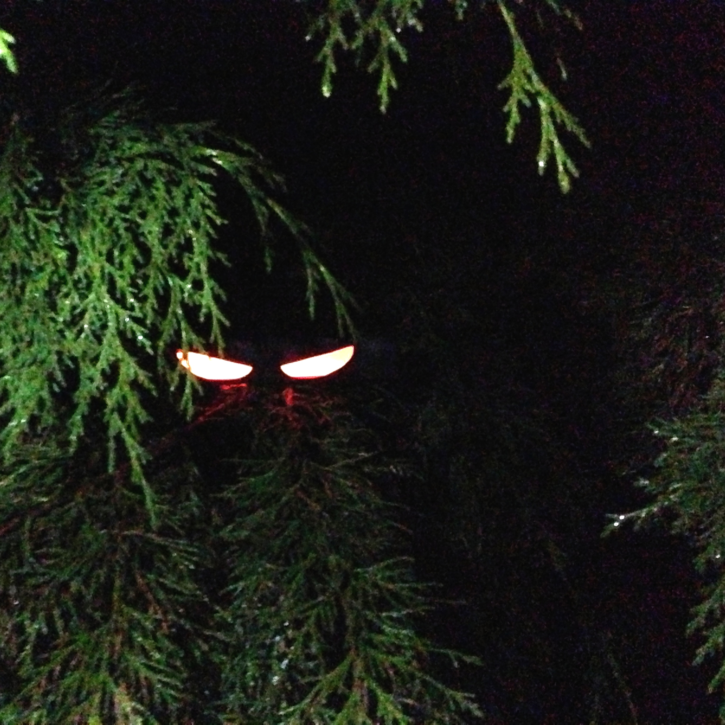 eerie glow stick halloween eyes – netninja