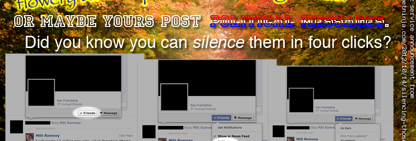 "Silencing ""those"" Facebook friends"