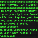 ssh for Programmers