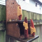 Hacking the squirrel feeder