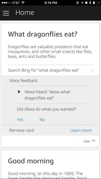 dragonfly_alexa_response