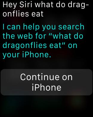 dragonfly_siri_response